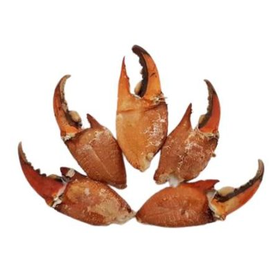 supplier cingkong kepiting